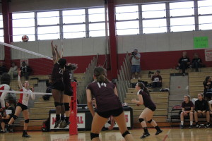 Volleyball season concludes following playoff loss