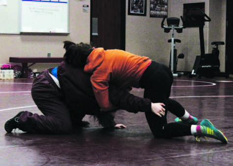 Wrestlers floor competition at State;  Season comes to close with individual championship