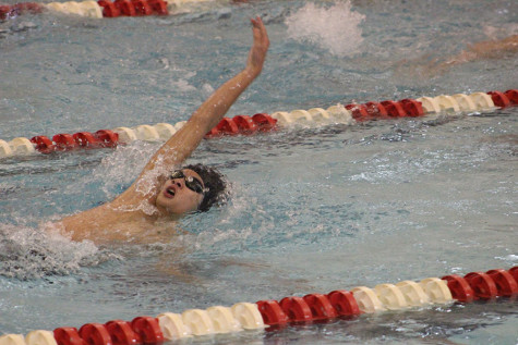 Swimming and Diving earn consecutive District championship titles