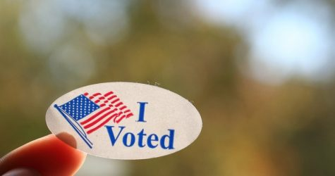 Young adults head out to vote this midterm season