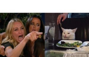 """The """"Woman and Cat Meme"""" rose to popularity relatively recently. It first surfaced May 1, 2019."""