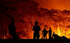 Australia's burning, here's what you need to know