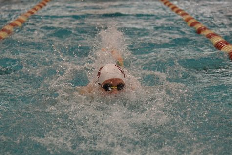 Cinco swimmers and divers culminate the season at the state meet Feb. 14-15